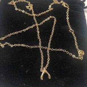 Lucky Wishbone Necklace,NWT